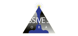 Progressive Success Corporation Leadership Development Training Courses